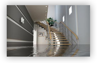 flooded cellar? Call us today